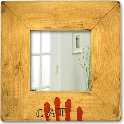Mirall amb 4 barres i 'CAT'