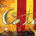 Detall del quadre amb senyera més mapa Països Catalans més escut St. Jordi i text Catalunya