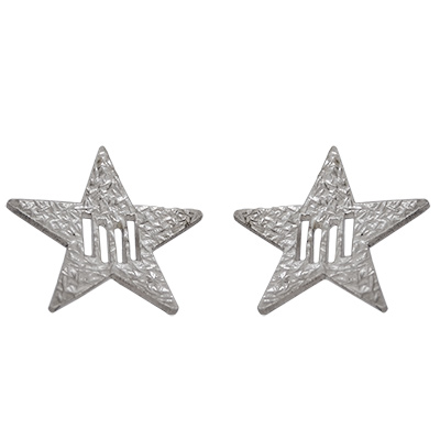 Arracades de Plata amb estel i 4 barres