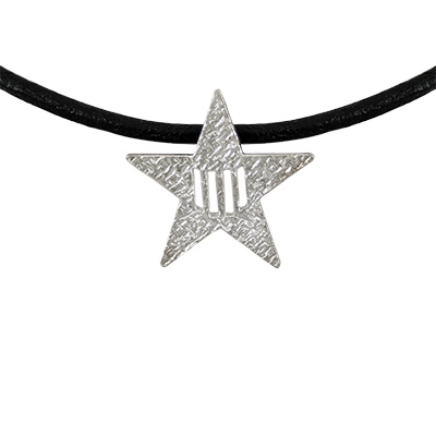 Collaret de cuir amb estel i 4 barres